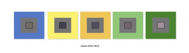 Canon EOS 750D : balance des blancs