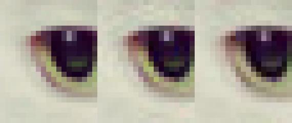 De gauche à droit : l'image non compressée, compression libjpeg, compression Guetzli.