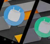 Android O est à l'approche, mais Marshmallow reste la version la plus populaire