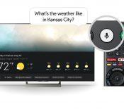 Google Assistant s'invite dans les téléviseurs Sony sous Android TV