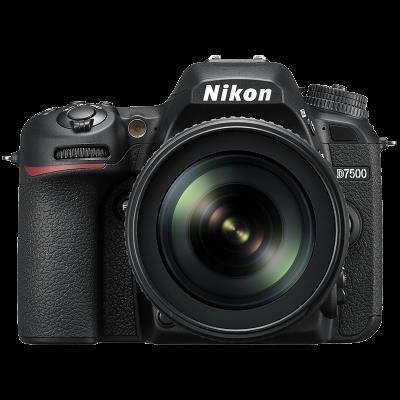 Test Labo du Nikon D7500 : le chaînon manquant ?
