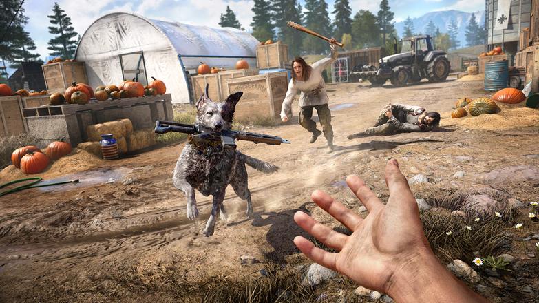 Far Cry 5 6