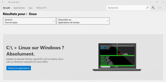©Capture d'écran Microsoft Store