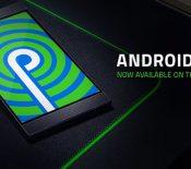 Le Razer Phone 2 reçoit la mise à jour Android 9.0 Pie