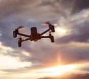 Parrot retenu par l'armée américaine pour concevoir des drones de reconnaissance