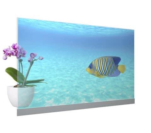 Panasonic va commercialiser son premier téléviseur OLED transparent