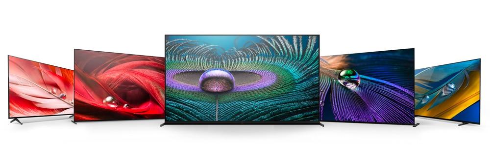 Tv-L 2021
