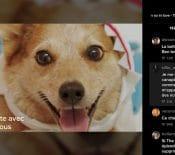 L'application TikTok s'invite sur les téléviseurs Samsung et Android TV