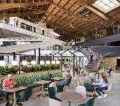 Stadia : Google ferme ses studios de développement de jeux vidéo