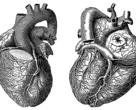 Quelle montre connectée choisir pour suivre sa santé cardiaque (fréquence, ECG) ?
