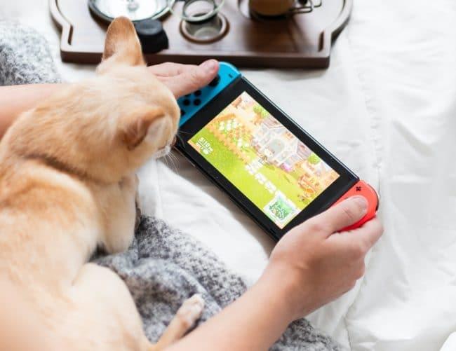 Nintendo Switch & Chat
