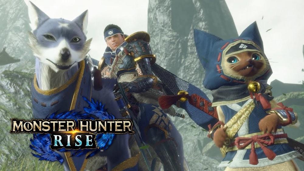 Ventes de jeux vidéo en France : les jeux Switch au sommet, portés par Monster Hunter Rise